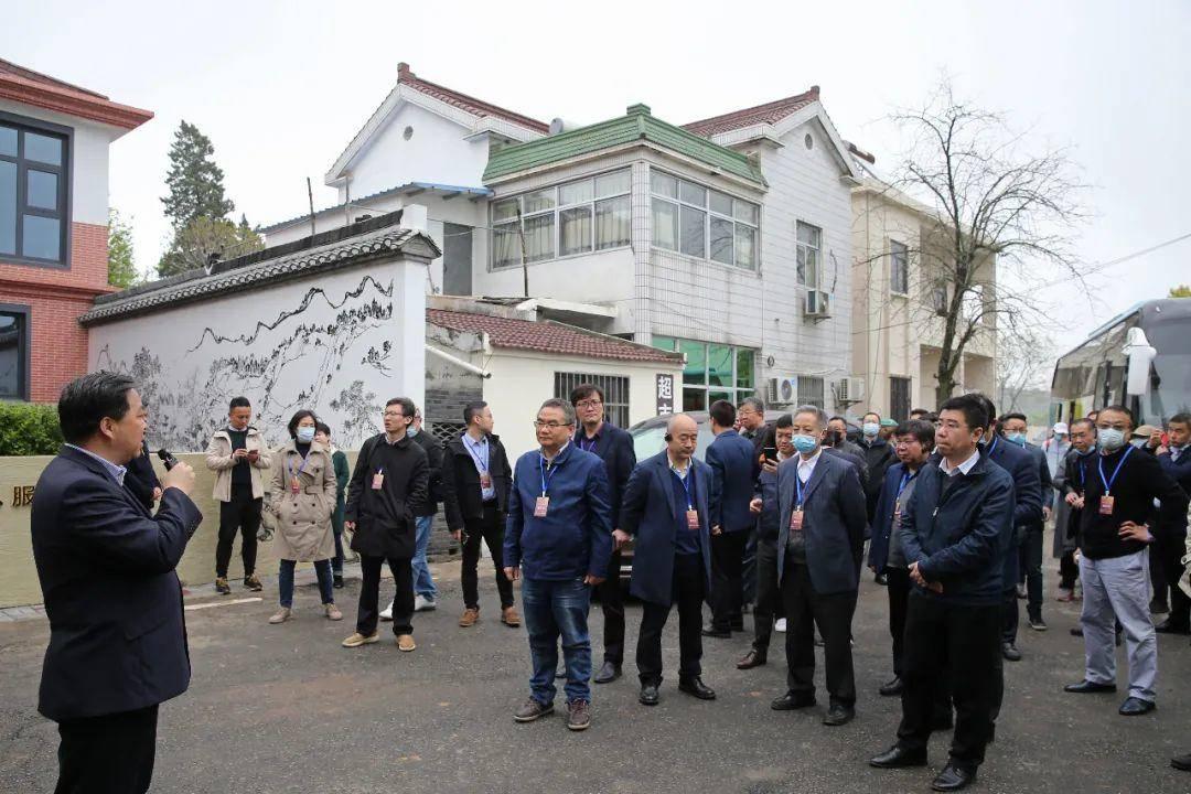 嘉宾参观漆桥街道高岗村。通讯员 杨军 南报融媒体记者 徐琦摄