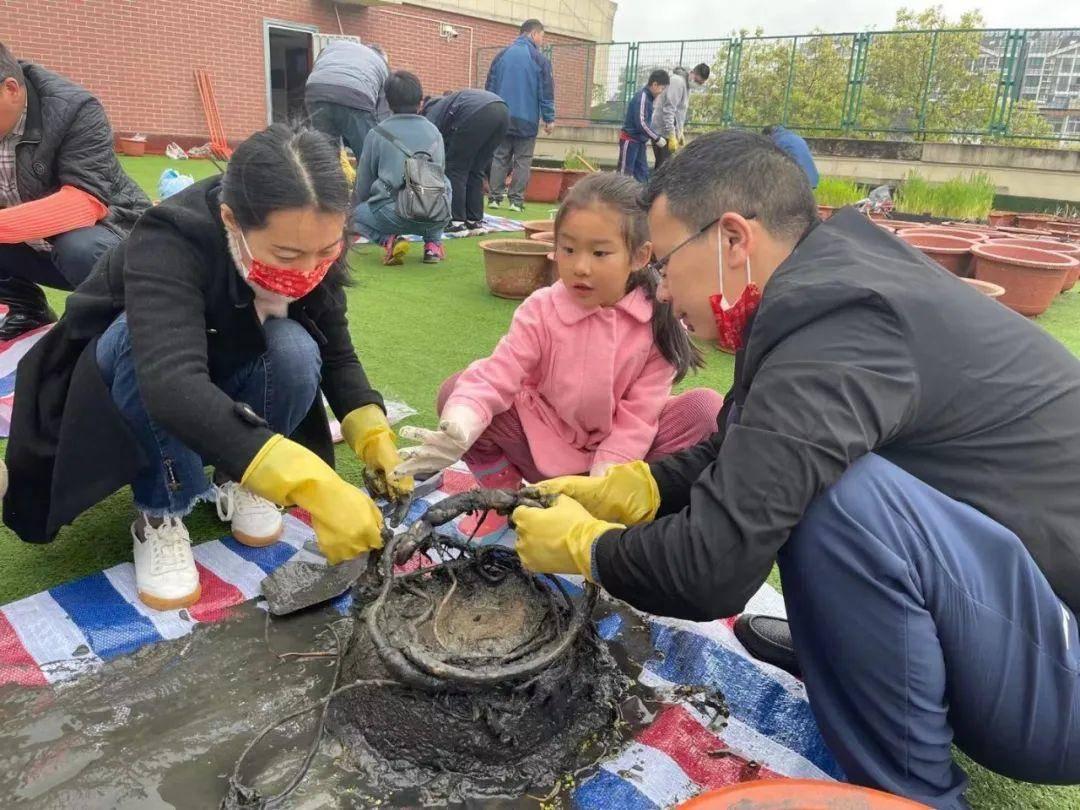 家長和孩子合作翻種荷花。校方供圖